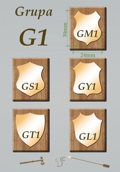 Grupa G1 , grawerowane na blasze mosiężnej 1mm